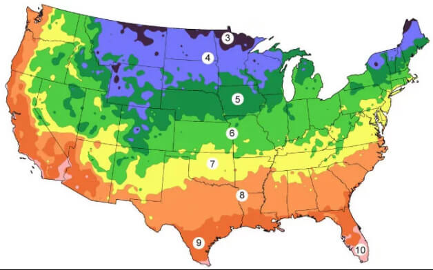 Vegetable Planting Schedule, Hardiness Zone Look-up