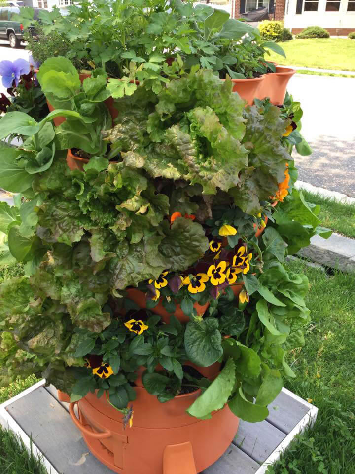 GARDEN TOWER: Composting Vertical Container Garden