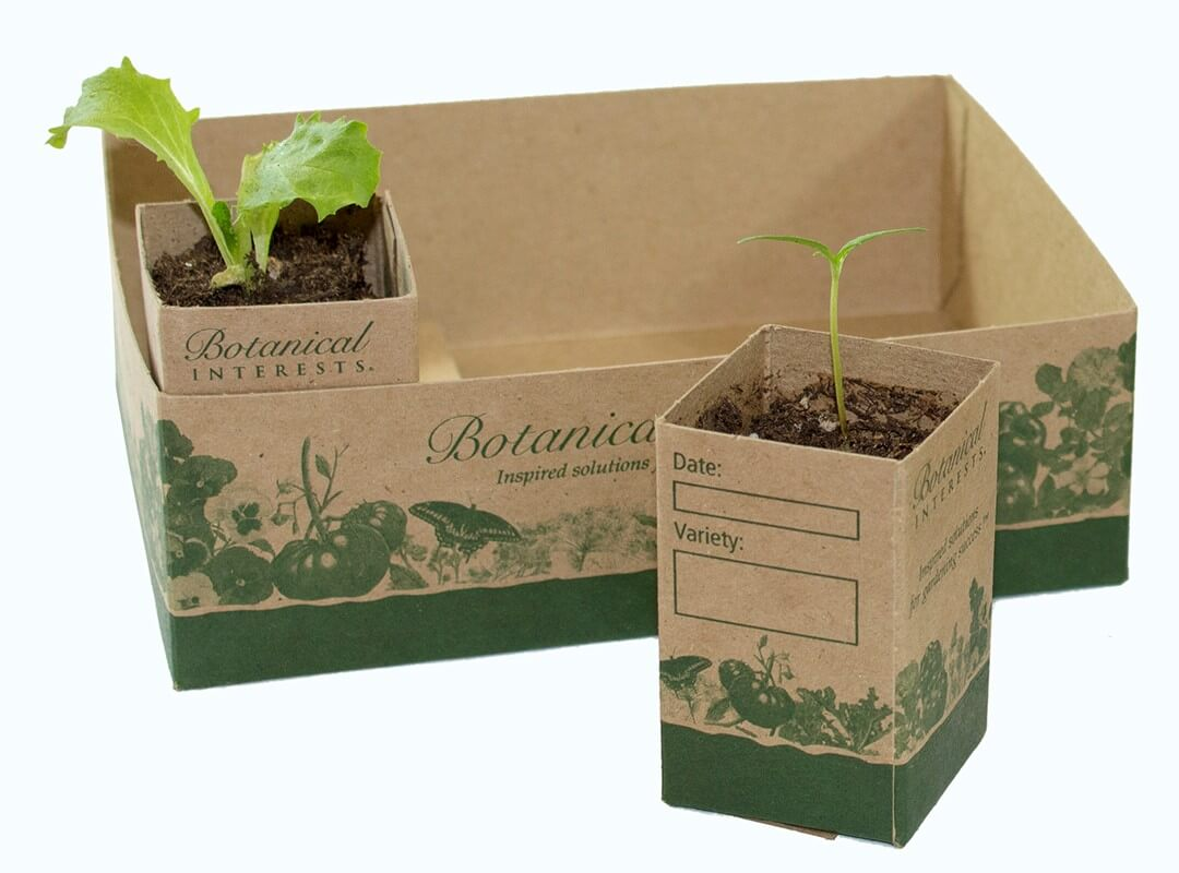 Recycled Paper Pots 1 1/2 inch (12 pack) and tray