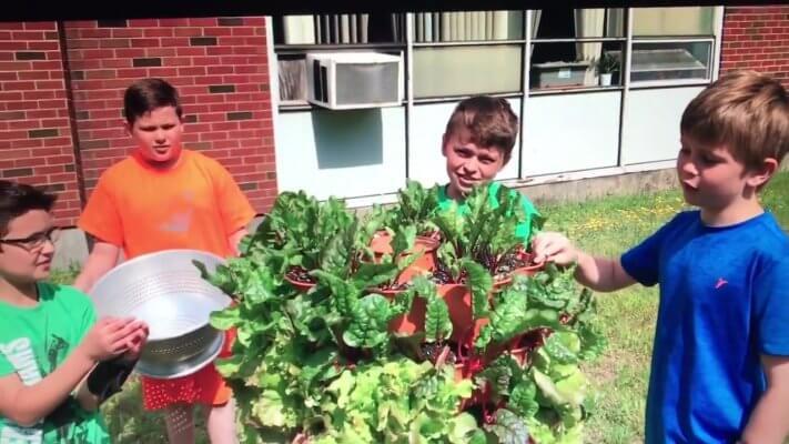 Minot elementary kids gardening