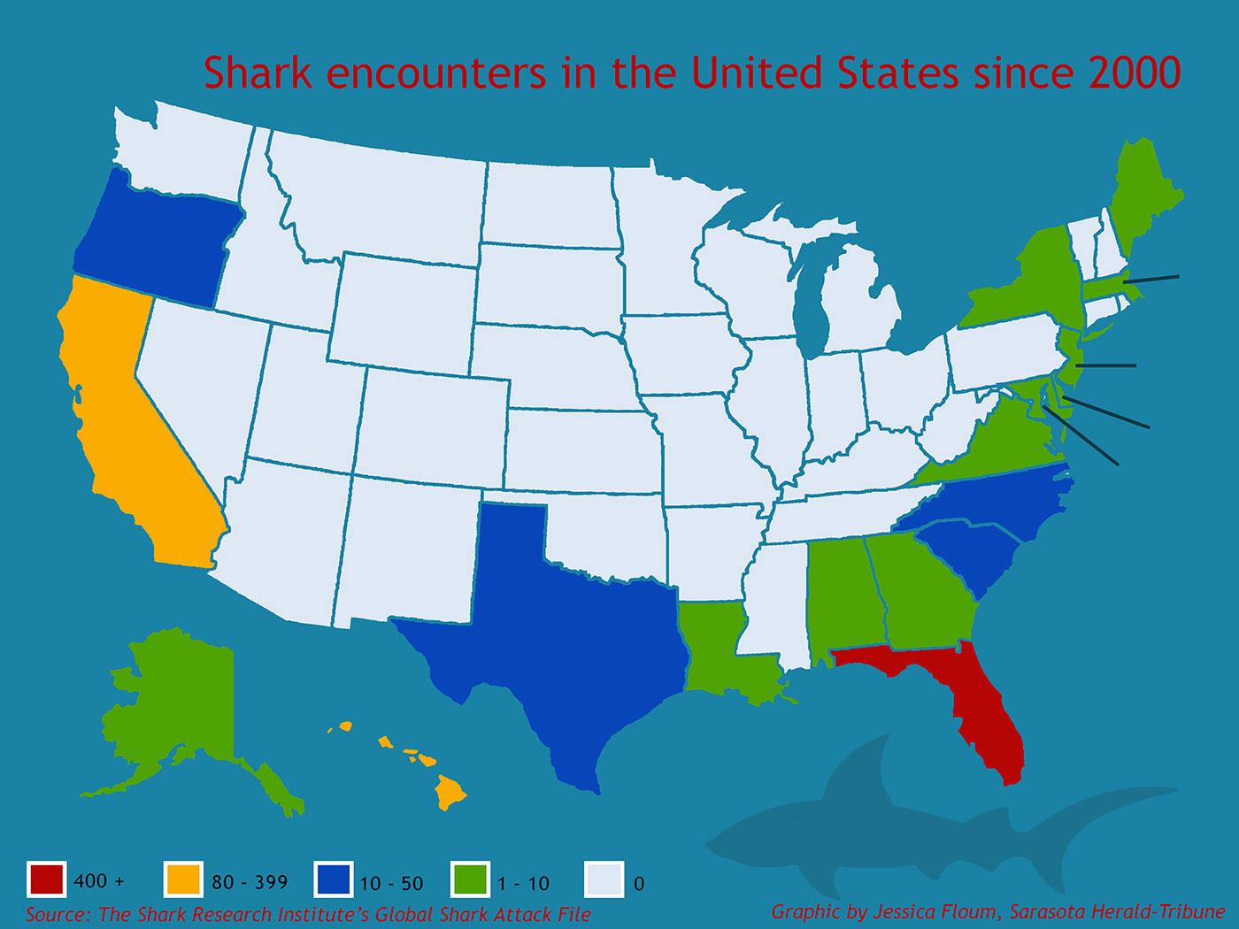 shark encounters since 2000