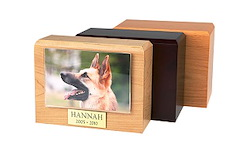 Photo Urn - Traditional Pet Picture Urn Image