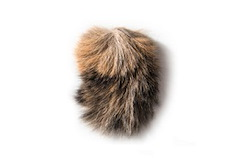 Fur Clipping Image