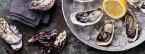 Where to order oysters and fresh seafood on tour in San Francisco, California