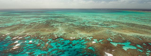 1-Great Barrier Reef
