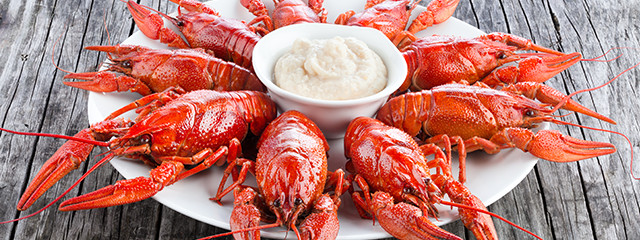 Eat crayfish in Finland this summer