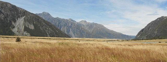 New Zealand_Canterbury Region_staff photos