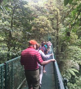 Costa Rica hanging bridges and sky walk.