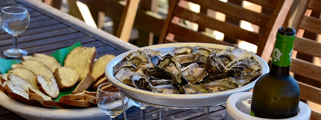 Oysters by Arcachon Bay