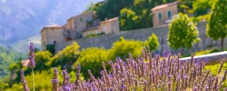 Travel spotlight: Provence, France