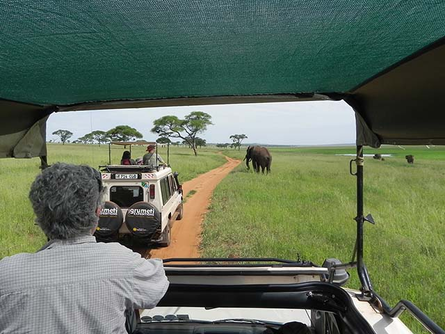 Tips for traveling in Tanzania on a Wildlife Safari