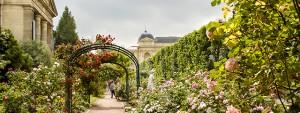 Botanical gardens in Paris, France