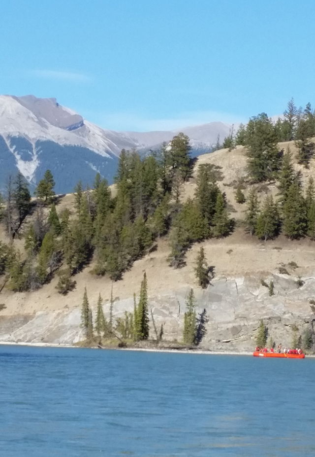 Athabasca rafting in the Candian Rockies