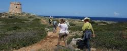 5 reasons to take Spain's Coast & Islands Walking Tour