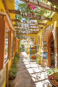 Colorful shop interiors