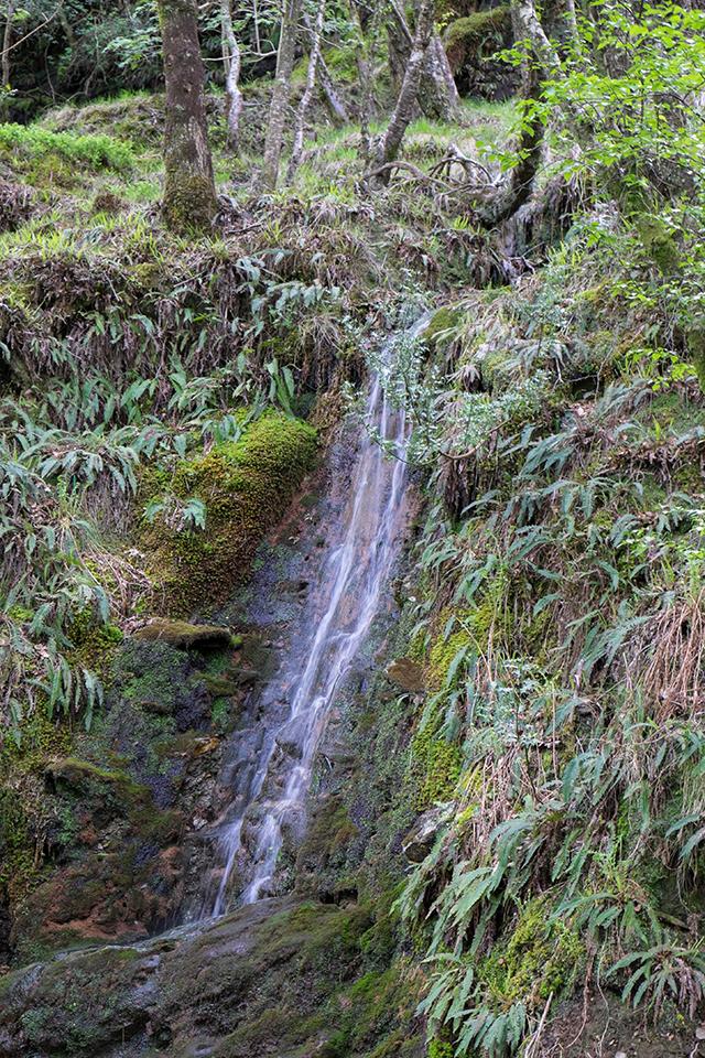 A waterfall in Glendalough, Ireland
