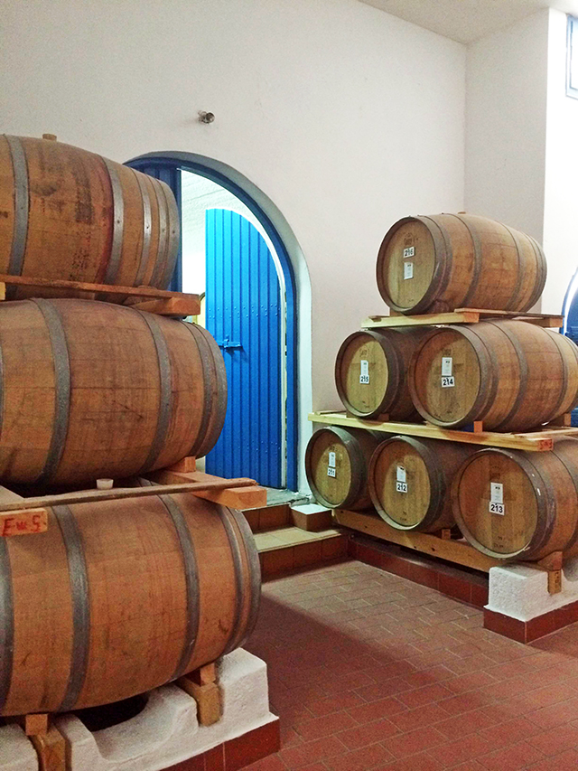 Barrels Santo Winery