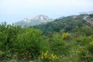 Amalfi Coast walk view