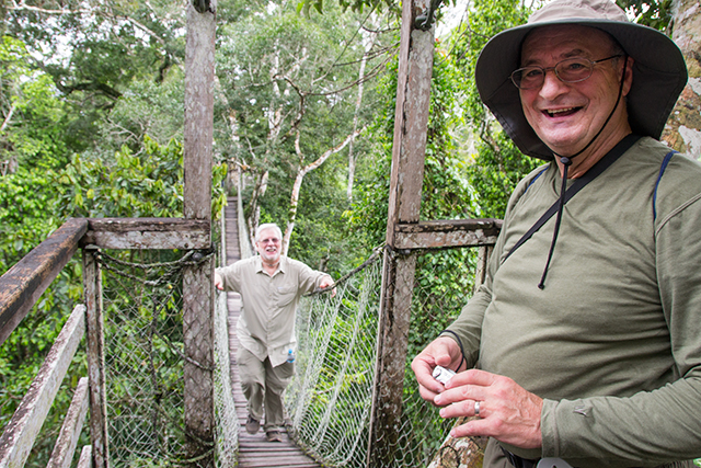 Canopy walk through the Amazon