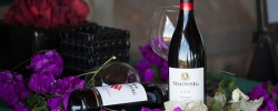 South Africa: The new spot for wine aficionados