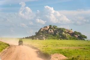 A game drive through the Serengeti