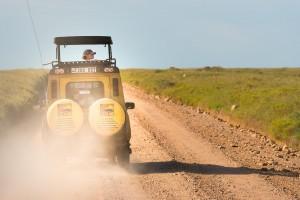 Taking in the sights on a Serengeti safari