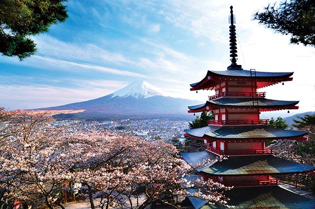 Mount Fuji, Tokyo, Japan in cherry blossom season