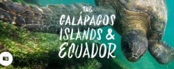 Jimmy in the Galápagos Islands & Ecuador