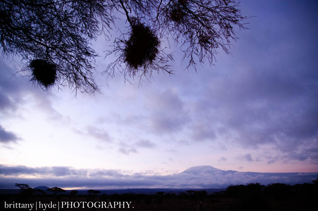 Mount Kilimanjaro sunrise