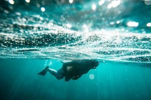 Underwater Snorkeling in the Galapagos Islands, Ecuador