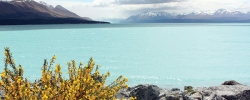 Photo of the Day: Lake Pukaki – New Zealand