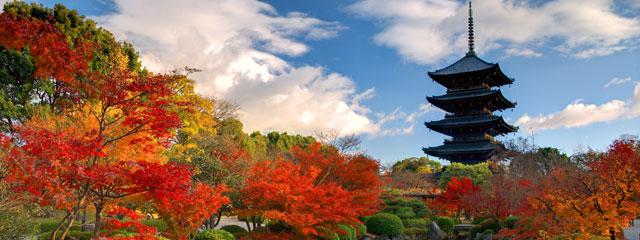 Kyoto Japan Fall Foliage