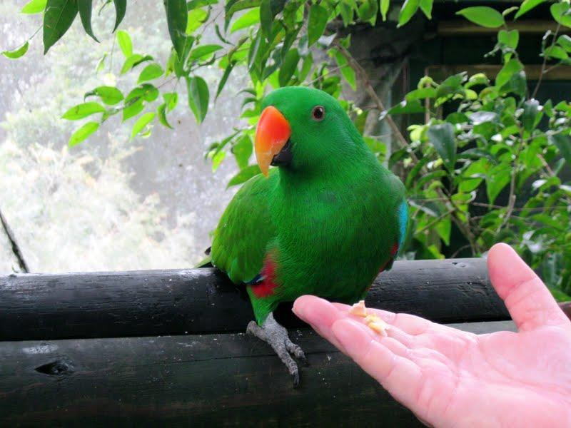 Ef Go Ahead Tours Travel Blog: Nancy Visits Australia & New Zealand