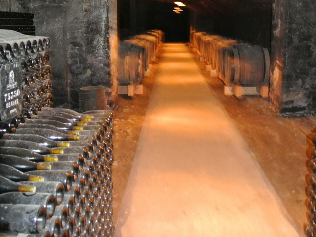 The Partriarche Wine Cellars, Beaune, Dijon, France