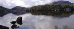 On the Road in Ireland: Killarney National Park