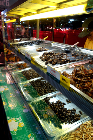 Fried bugs in Chian Rai, Thailand