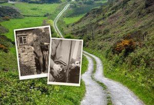 Ancestry + Go Ahead - Ireland