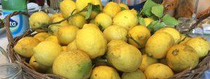 janet-lemons