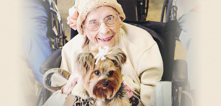 A senior beautifully dressed wtih a cute dog in her lap with a bow in her hair
