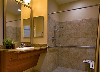 handicapped accessible shower and sink area