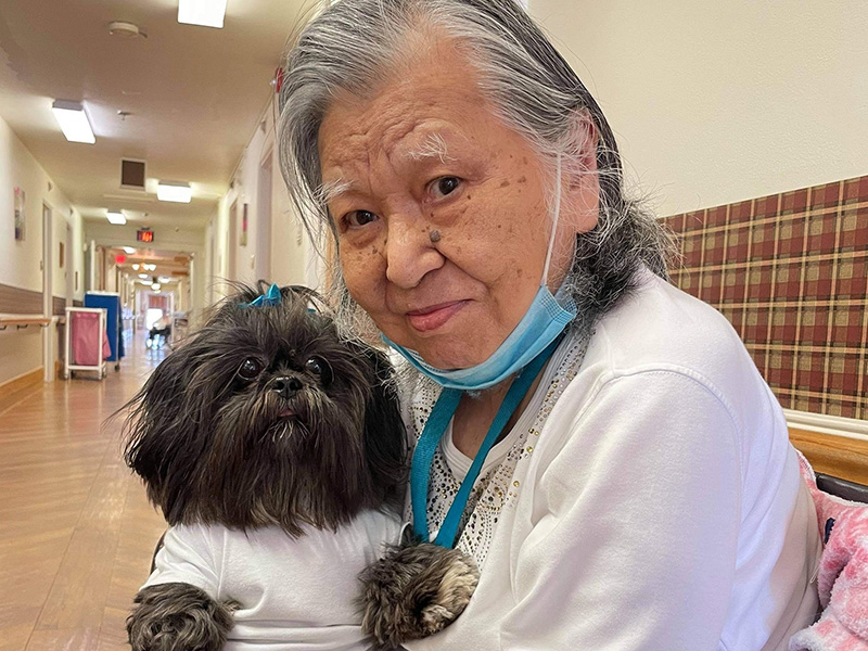 Timber Point pet therapy