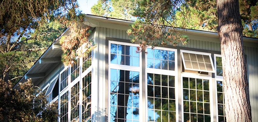 windows of Cypress Ridge amongst the trees