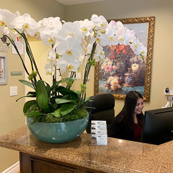 Orchid plant on the granite counter of the reception desk