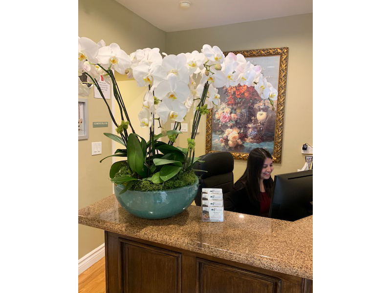Our Signature Foothill Orchid