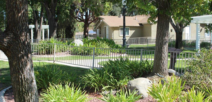 Resident walk way with manicured plants on each side of the fence.