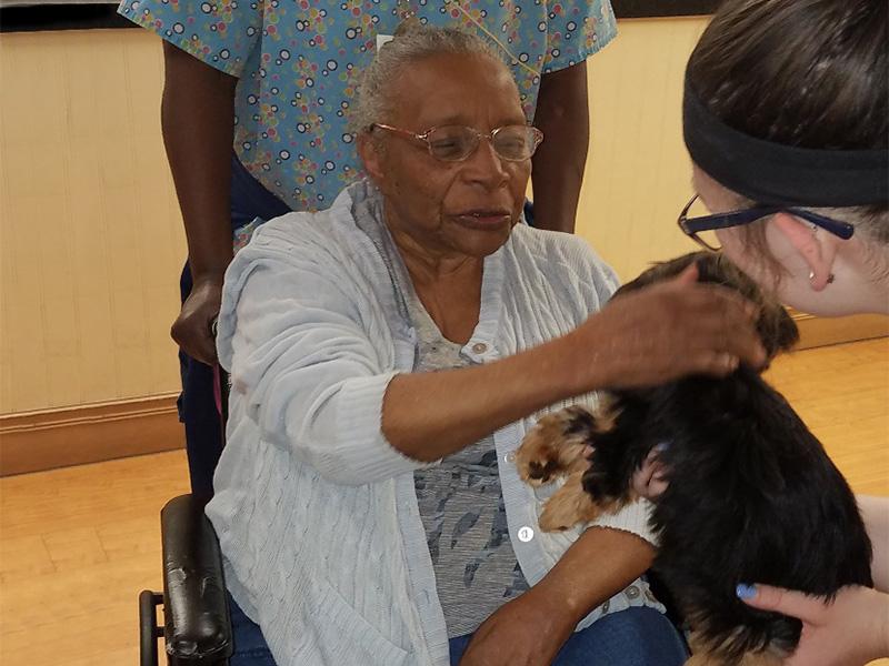 resident feeding a puppy