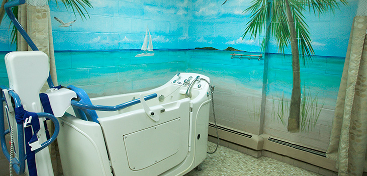 Walk in bathtub with a seaside mural painted on the wall