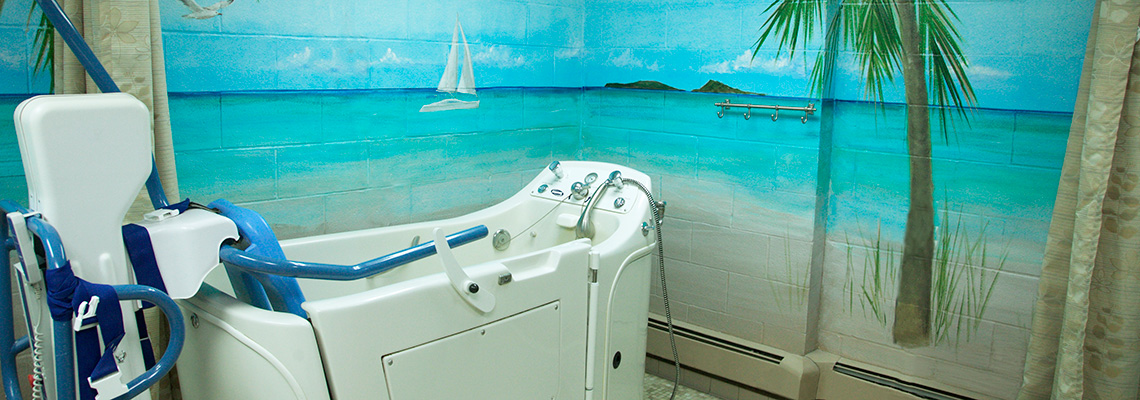 Walk in bathtub with a seaside mural painted on the wall of the bathroom