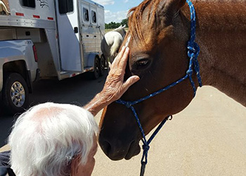 wheatlands resident petting a horse