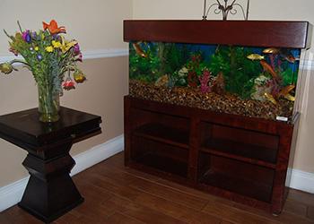 Crown Bay aquarium and flower bouquet